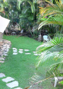 Tiki High View